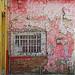 (carol murray) Tags: mexico guanajuato 092418explore13