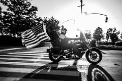Easy Riding (rvjak) Tags: ny usa road street rue new york d750 nikon black white noir blanc monochrome bw bike motorbike moto etatsunis united states america flag drapeau sunset soleil coucher harley davidson