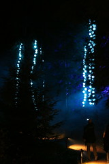 2018 - 4.10.18 Enchanted Forest (122) (marie137) Tags: forest lights trees show marie137 bright colourful pitlochry treeman attraction visit entertainment music outdoors sculptures wicker food drink family people water animation