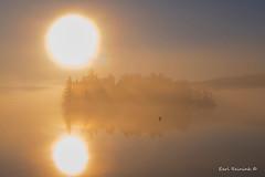 Fall has fallen (Earl Reinink) Tags: landscape waterscape sunrise sunset refection mist fog bird loon water sky earl reinink earlreinink trtadadaza