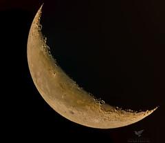 Crescent (AnthonyVanSchoor) Tags: anthonyvanschoor maryland usa