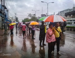 A typical rainy day in Dhaka (asmtanvirhr) Tags: candid people peoples urban cityscape contrast mood travelphotography life travel tourism streetvision iphonephotography mobilephotography dhaka bangladesh moment outdoor journalism street streetphotography streetphoto streetscape streetart streetshot streetphotographyinternational beststreets urbanstreet streettog dhakastreet streetpeople streetpeoples stranger strangers streetreflection mirror reflection reflectionphotography shadow humanshadow mirrorphoto mirrorphotography reflect moody walk walking passerby passersby naturallight road traffic rush busy cloudy rainy rainyday lowlight lowlightphotography softlight goldenhour goldenlight warmlight umbrella colors colours color colour colorful colourful sky