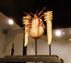Bugs (helenoftheways) Tags: insects waxworks whitechapelgallery london uk bugs artwork ticks