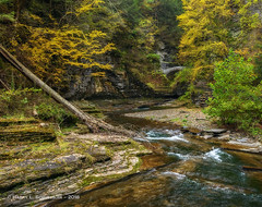 Enfield Creek In The Fall (HarrySchue) Tags: fall fallcolors ithacany landscape luciferfalls nature places robertftremenstatepark waterfalls creeks streams trees rocks nikon d800e sigmalens bwfilters reallyrightstuff