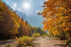 Beautiful autumn day (Dreamy Pixel) Tags: alps autumn beautiful beauty black blue clear colors europe face fall flower foliage forest fresh grass green high hill julian landscape meadow mountain national nature outdoor park pericnik plant relaxation river rock scenic sky slovenia sport stone summer summit tourism tranquil travel triglav valley vrata wall wallpaper water waterfall white ngc