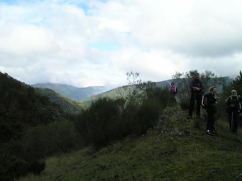 Marcha de Senderismo Bosque del Roñas Logroño Fotografia Javi Cille (13)