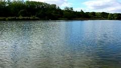 DSCN5156 nature paysage 16 (lac reflets vagues) Vallières (jeanchristophelenglet) Tags: santeuilfranceétangdevallière nature natureza paysage landscape paisagem reflet reflection reflexo