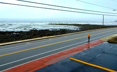 Tiny skater by the sea (Robert Saucier) Tags: yorkbeach maine route road pavement mer sea océan ocean trottoir sidewalk vagues waves orange jaune yellow fils wire oblique skater atlantique atlantic poteau img4108