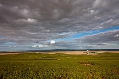 Flickr_Champagne_Verzy_Francia_09-2018_IMG_2068 (Roberto Bombardieri) Tags: francia france champagne vigne uva vino nuvole cielo