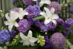 Flowers (Seventh Heaven Photography **) Tags: 128th shrewsbury flower show shropshire england nikon d3200 flora blooms flowers blue purple white lilies allium globe hydrangea