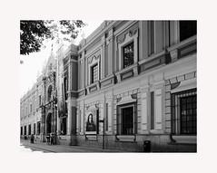 Sevilla 56 (BLANCA GOMEZ) Tags: spain sevilla andalucia andalusia bw blackwhite arquitectura architecture light shadows silhouettes museum sevillafineartsmuseum museodebellasartes