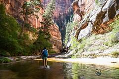 Utah_2018_ (71 of 144) (jasinrodriguez) Tags: zion trekking family narrows subway zionnationalpark nationalparks outdoors