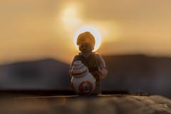 Rey and BB-8 (Ballou34) Tags: 2017 7dmark2 7dmarkii 7d2 7dii afol ballou34 canon canon7dmarkii canon7dii eos eos7dmarkii eos7d2 eos7dii flickr lego legographer legography minifigures photography stuckinplastic toy toyphotography toys stuck in plastic rey bb8 sunset sun star wars starwars sw aarhus jutlandcentral danemark dk