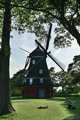 Windmill (Bri_J) Tags: copenhagen denmark københavn danmark city nikon d7500 windmill kastellet københavnsslot copenhagencastle trees