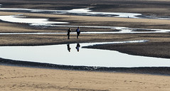 Shadows (JLM62380) Tags: beach mer plage sea blue bleu femme equihen france sable sand ocean eau family personnes océan rivage shadows ombres silhouettes hautsdefrance