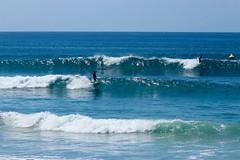 IMG_6891 (palbritton) Tags: surf surfing surfer singlefin longboard longboardsurfing surfcontest