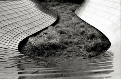 Curves (johnlishamer.com) Tags: 2018 35mm bppedestrianbridge ilfordfp4125 lishamer maggiedaleypark millenniumpark nikonf3 slr chicagoil family film johnlishamercom rodinal summer