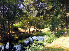 Chantada (Lugo) (sebastiánaguilar) Tags: 2018 chantada lugo galicia españa paisajenaturaleza