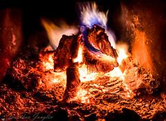 Firewood (real.jtj) Tags: fire woods skog skogen dalarna falun enviken sverige sweden stuga