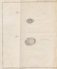 This image is taken from Some facts relative to the late Mr. John Hunter's preparation for the Croonian lecture (Medical Heritage Library, Inc.) Tags: hunter john 17281793 ocular physiological phenomena usnationallibraryofmedicine medicalheritagelibrary americana date1793 id2691023rnlmnihgov