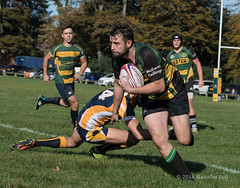 Rugby (183) (Malcolm Bull) Tags: include rugby union shoreham rfc midhurst buckingham park 20180929rugby0183edited1web