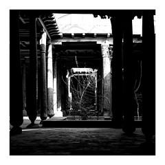 Assisted Living (b.jaroenwong) Tags: uzbekistan khiva mosque tree monochrome blackandwhite squareformat fujifilmxseries building geometry