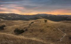 Let's walk around (wandering indian) Tags: sunrise cloudsstormssunsetssunrises nikon landscape california bayarea sanjose nature kedardatta hills tree grass explore hiking