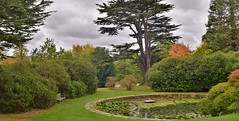 Gardens at Yorkshire sculpture park. (A tramp in the hills) Tags: gardens yorkshiresculpturepark thewakefieldway
