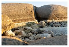 Dry rock pool (leo.roos) Tags: rockpool ramsvikland ramsvikslandet bohusgranite firstcampsolvik campsite camping smögen sweden zweden swedenspring2018 a7rii darosa leoroos sel1670z variotessar16704za variotessarte41670 sonycarlzeiss1670mmf4zaossvariotessar sonycz16704 apsc