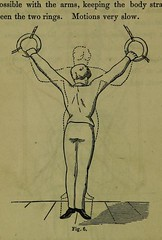 This image is taken from Page 356 of Weak lungs, and how to make them strong, or Diseases of the organs of the chest : with their home treatment by the movement cure (Medical Heritage Library, Inc.) Tags: tuberculosis calisthenics lung diseases medicalheritagelibrary cushingwhitneymedicallibrary americana date1864 id39002055096649medyaleedu