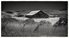 San Gregorio Barn 1 (CDay DaytimeStudios w/1,000,000 views) Tags: barn bluesky california countryroad countryside oldbuildings oldhouse pacificcoast pacificcoasthighway road sangregorio sanmateocoast sanmateocounty stageroad stagestop trees