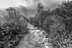 Creek (Tasmanian58) Tags: bw nb blackwhite noirblanc monochrome creek river water sony a7ii batis batis18 18mm 218mm zeiss landscape