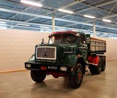 Magirus-Deutz 170D21 Lewiszong Transport met kenteken BJ-55-13 tijdens de  Dag van Historisch Transport in Druten 14-10-2018 (marcelwijers) Tags: magirusdeutz 170d21 lewiszong transport met kenteken bj5513 tijdens de dag van historisch druten 14102018 magirus deutz torpedo truck trucks lkw camion vrachtwagen vrachtauto nederland gelderland niederlande netherlands pays bas
