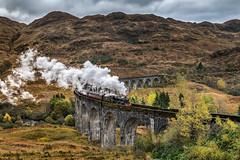 Autumn Jacobite (petebristo) Tags: landscape scotland thejacobite train transport