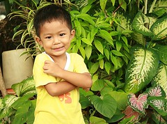 a boy and vegetation (the foreign photographer - ฝรั่งถ่) Tags: boy child arms crossed vegetation khlong thanon portraits bangkhen bangkok thailand canon