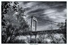 Le pont d'Aquitaine en N&B 2/2 (Fotomaniak 53) Tags: pont aquitaine bacalan parc berges garonne gironde 33 automne novembre 2018 fotomaniak53 canon 550d nb monochrome psp