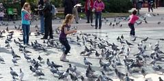Girls and Birds, Barcelona, Spain (Joseph Hollick) Tags: barcelona spain birds bird feeding pigeons