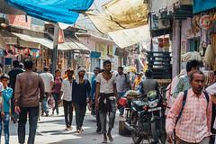 Shaded Street, Uttar Pradesh India (AdamCohn) Tags: adam cohn uttar pradesh india mathura vrindavan holi pilgrim pilgrimage pilgrimmage pilgrims wwwadamcohncom adamcohn uttarpradesh isapurbanger