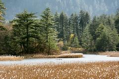 Juizhaigou National Park, Szechuan, China (goneforawander) Tags: backpacking nikon d7100 travel nationalpark goneforawander juizhaigou szechuan sichuan asia china enzedonline abazangzuqiangzuzizhizhou sichuansheng cn