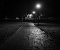Path to the Bandstand (iMatthew) Tags: bostoncommon boston bw bnw blackandwhite monochromatic handheld olympuspenf cobblestone parkmanbandstand