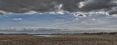 Change in the weather (David Feuerhelm) Tags: nikkor wideangle panorama reeds clouds blue water trees countryside nature snape suffolk marsh nikon d750 2470mmf28 england