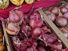 Onions (earthdog) Tags: 2018 googlepixel pixel androidapp moblog cameraphone farmersmarket market shopping losgatos foood food edible onion vegetable purpleonion