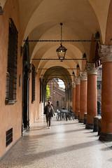 Sotto i portici (carlobaldino) Tags: bologna sette 7 chiese via santo stefano emilia italy portici
