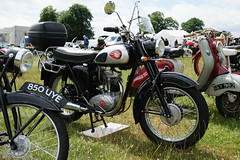 BSA C15 (SG2012) Tags: bsa astlepark1000enginerally classicbike classicmotorcycle 16062018