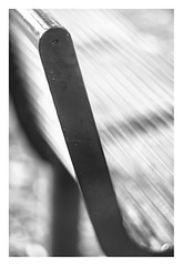 Bench (leo.roos) Tags: bench bank noiretblanc deoudedelft madeinholland olddelftdelfinorf120mmf16 delfinor12016 projectorlens projectionlens darosa leoroos