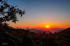 Asturias (Silvia Illescas Ibáñez) Tags: atardecer sunset sun sol mountain mountains montañas montaña naranja orange arbol tree rama relax paceful paz sky cielo