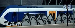 traingraffiti (wojofoto) Tags: treingraffiti trein traingraffiti train amsterdam graffiti streetart nederland netherland holland wojofoto wolfgangjosten