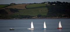 I Saw Three Ships (Worthing Wanderer) Tags: southwestcoastpath cornwall cornwallcoast coast cloudy sunny river path summer august place roseland pendower