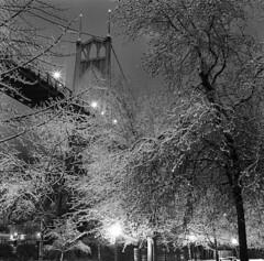St. Johns Bridge, winter night (Zeb Andrews) Tags: hasselblad film stjohnsbridge winter snowy bridgeworld bridgetown night blackwhite 6x6 kodaktrix cathedralpark portland oregon mediumformat scannedatbluemooncamera nikoncoolscan9000