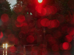 stop at a red light (vertblu) Tags: rain rainy raindrops windshield traffic trafficlights red redlight stop evening bokeh reddots headlights reflection reflections reflectedlight streetcrossing vertblu heavyrain downpour circlescirclescircles circles rotrossorougerood rot